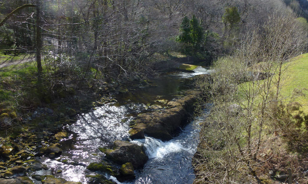 Afon-Clywedog-(2)