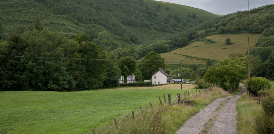Down-the-farm-track
